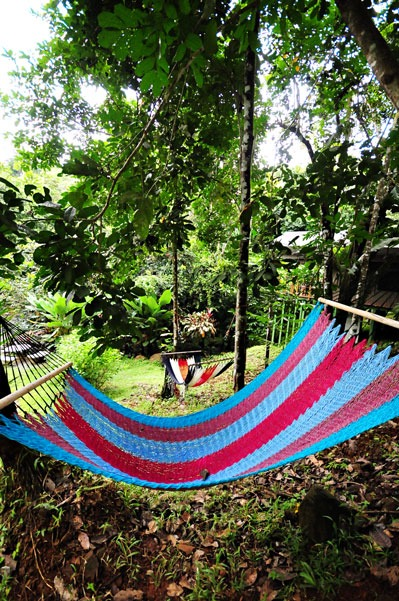 09-hammocks-in-the-garden